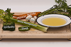 Wellness soup ingredients